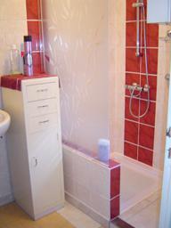 casser la baignoire en fonte pour mettre une douche comment faire conseils tr. Black Bedroom Furniture Sets. Home Design Ideas