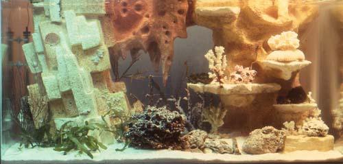 décor fond aquarium resine